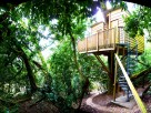 1 Bedroom Nest Treehouse in the Blackdown Hills, near Honiton, Devon, England