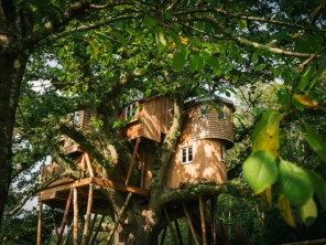 Luxury Family Friendly Treehouse Hideaway in Hotel Grounds, Eggesford, Devon, England