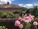 2 Bedroom Holiday Cottage near the Sea in Symondsbury, West Dorset, England