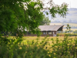 Luxurious and Family Friendly Hawk Safari Tent with Hot Tub near Brompton Ralph, Somerset, England