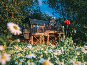 Three Bedroom Eco Treehouse in Manor House Grounds, North Yorkshire Moors, Yorkshire, England