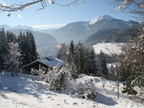 3 Bedroom Ski Chalet in France, Rhone Alps, Praz de Lys-Sommand