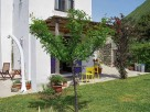 1 Bedroom Homely Rural Apartment with Garden in Forio on the Island of Ischia, Italy
