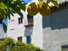 4 Bedroom Authentic Village House with Pool in Melegis, Andalucia, Spain
