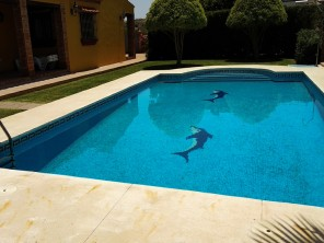 3 Bedroom Countryside Villa with Pool near Estepona, Andalucia, Spain