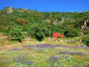 1 Bedroom Secluded Rural Studio in the Sierra de Montanchez, Extremadura, Spain
