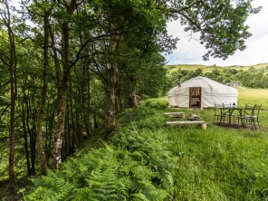 Collection of Yurts & Tipis for 2-4 people in an Off Grid Forest Retreat in the Dyfi forest, Machynlleth, Wales