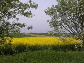 Nottinghamshire