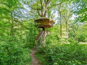 1 bedroom Treehouse near Guyonvelle, Haute-Marne, Grand Est, France