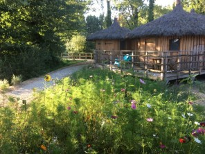1 bedroom Cabin near Pressac, Vienne, Nouvelle-Aquitaine, France