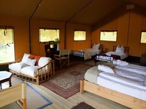 1 bedroom Safari Lodge near Varen, Tarn-et-Garonne, Occitanie, France