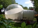 Bubble Room image #5
