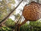 Les Lov'nids image #4