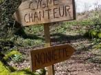 Cygne Chanteur image #6