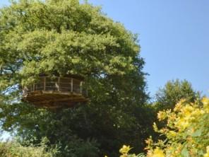 1 bedroom Treehouse near La Baconnière, Mayenne, Pays de la Loire, France