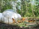 1 bedroom Bubble near Montendre, Charente-Maritime, Nouvelle-Aquitaine, France