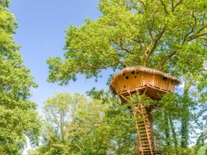1 bedroom Treehouse near Chassey-Lès-Montbozon, Haute-Saône, Burgundy-Franche-Comté, France