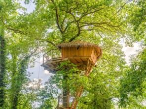 1 bedroom Treehouse near Chassey-Lès-Montbozon, Haute-Saône, Bourgogne-Franche-Comté, France