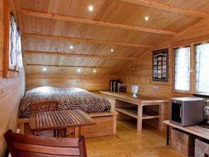 1 bedroom Ecolodge near Anse, Rhône, Auvergne-Rhône-Alpes, France