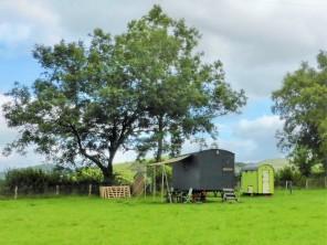 1 bedroom Chalet / Lodge near Tregaron, Mid Wales, Wales