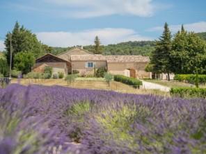 6 bedroom Apartment near Visan, Provence, France