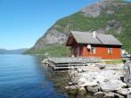 Fuglsetfjorden (FJS229) #1