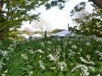Yurt 4, East Thorne Farm #9