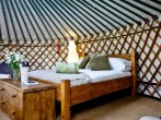 Yurt 4, East Thorne Farm #7