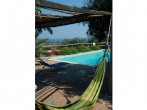 Hammock & pool
