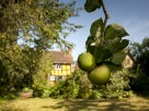 2 Bedroom Character Cottage in England, Shropshire, Bewdley
