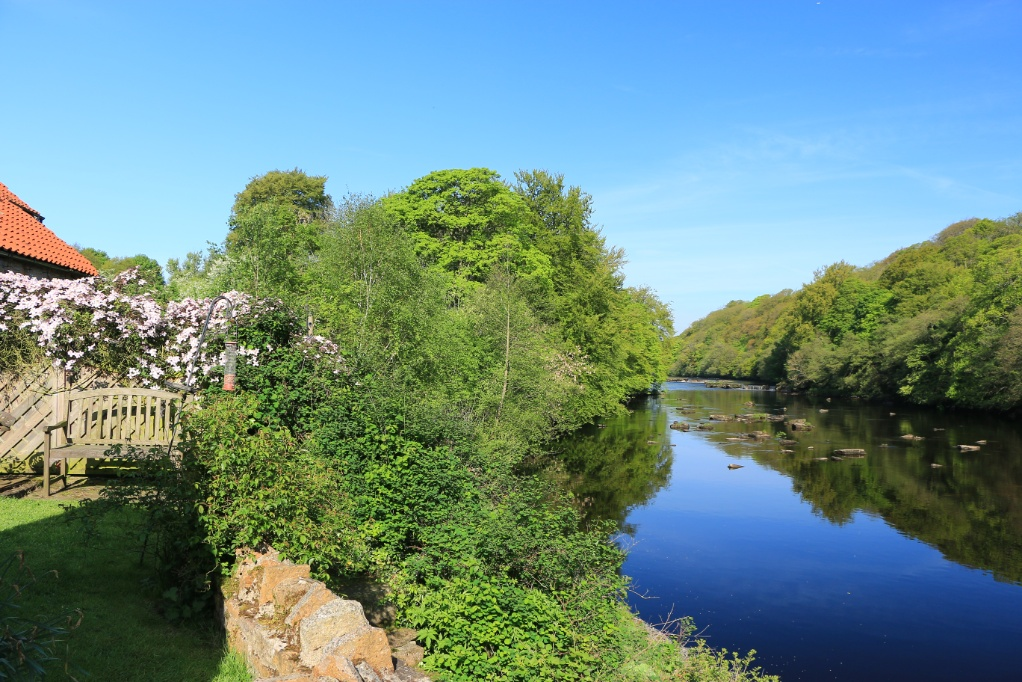 Garden right next to river