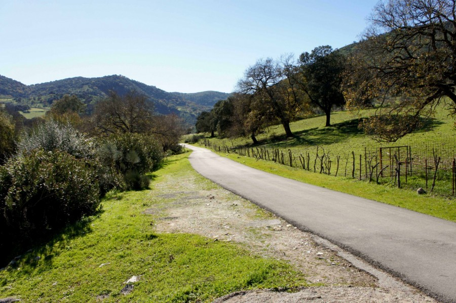 Great cycle routes in Andalucia