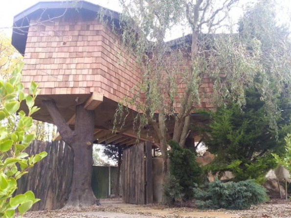 Treehouse hideaway in Kent