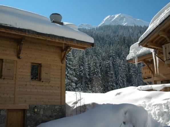 17 bed ski chalet in France