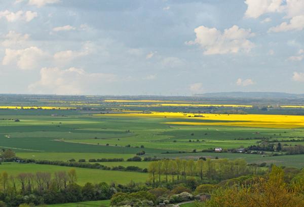 Beautiful Kent views